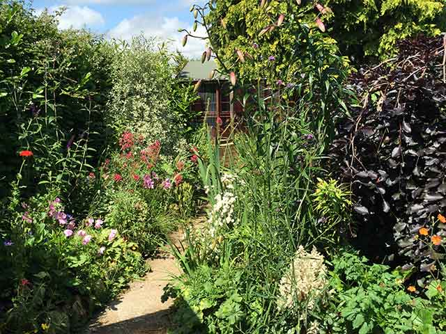 garden and cattery