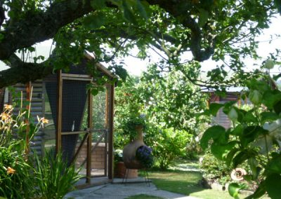 Cattery East Sussex garden view 600