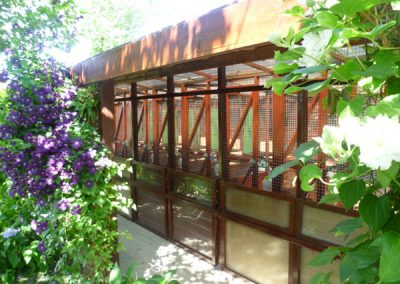 Cattery East Sussex single and double units 600